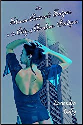 The Steam-Powered Sniper in the City of Broken Bridges (The Raven Ladies Book 2)