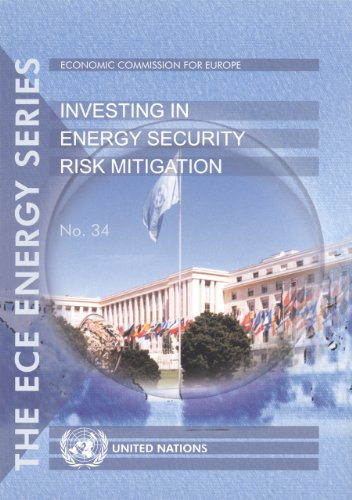 Investing in Energy Security Risk Mitigation (Ece Energy, Band 34)