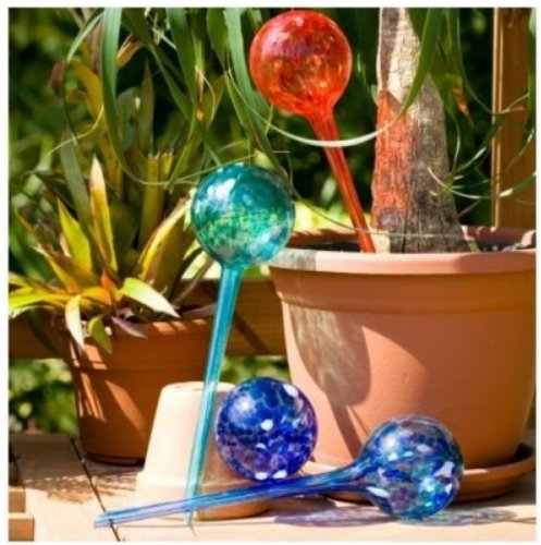 2-x-contenitori-a-sfera-in-vetro-per-irrigazione-automatica-delle-piante