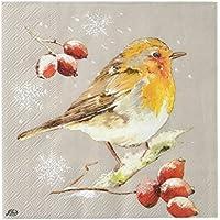 IHR Inverno Robin Lino pranzo di Natale a 3strati Tovaglioli di carta confezione da 20Natale Tovaglioli