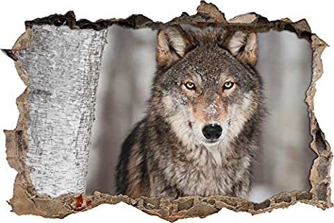 Pixxprint 3D_WD_S2603_62x42 eleganter Wolf in Schneelandschaft Wanddurchbruch 3D Wandtattoo, Vinyl, bunt, 62 x 42 x 0,02