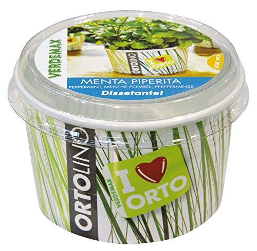 Verdemax 2025 - Kit Ortolino Menta piperita, Colore: Bianco/Verde
