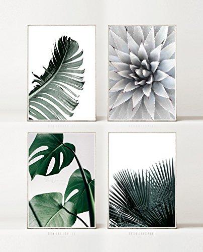 BILDER SET °3: TROPISCH -ungerahmt- 4 x DIN A4, Natur, Palme, Sukkulent, Monstera, Pflanze