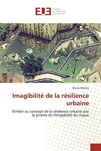 Imagibilité de la résilience urbaine par Bruno Morleo