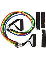 Amzdeal Bandas de resistencia 5pcs Ligas elásticas de resistencia, Ejercicio de fitness, Hechas al 100 % de látex natural puro (5-25 libras de resistencia)