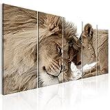decomonkey Bilder Löwe 200x80 cm 5 Teilig Leinwandbilder XXL Bild auf Leinwand Vlies Wandbild Kunstdruck Wanddeko Wand Wohnzimmer Wanddekoration Deko Tiere Afrika Katze braun beige