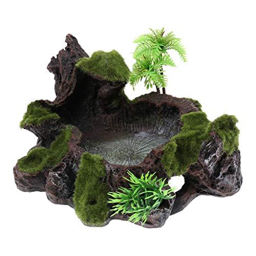 PETSOLA Musgo De La Vendimia Decoración Reptil Tortuga