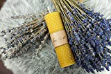 BeeIT 5x Pure Bienenwachs, handgerollt Honeycomb Kerzen Box mit natürlichem...