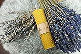 BeeIT 5x candele di cera d' api pura, Honeycomb arrotolato a mano scatola con cera d' api naturale candele