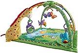 Mattel Fisher-Price K4562 Rainforest Erlebnisdecke Bild 5