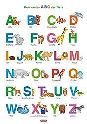 Fragenbär-Lernposter: Mein erstes ABC der Tiere (in der Schulbuch-Druckschrift) L 70 x 100 cm: Gerollt, matt folienbeschichtet, abwischbar (Lerne mehr mit Fragenbär)
