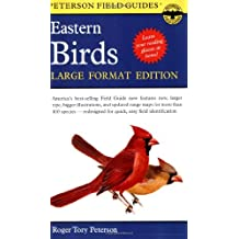 Peterson Field Guide To Eastern Birds Large Format Ed by Roger Tory Peterson (1999-08-01)