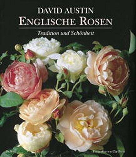 Englische Rosen: Tradition und Schönheit