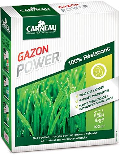 Gazon haute résistance Power 2,5kg