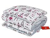 BABYLUX Babydecke Krabbeldecke MINKY Kuscheldecke Decke 75 x 100 cm mit KISSEN 30x35cm (12K. Indianer Rosa)