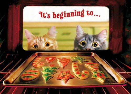 Avanti Weihnachtskarten, Motiv Engel Kitty, 10 Karten Cats and Cookies -