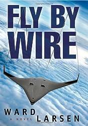 Fly By Wire: A Jammer Davis Thriller by Ward Larsen (2010-09-06)