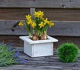 more-decor-de Wunderschöner Pflanztopf aus Holz - Quadratisch - Weiß