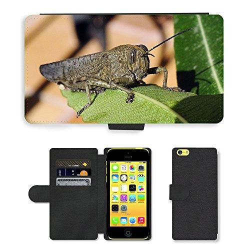 Just Mobile pour Hot Style Téléphone portable étui portefeuille en cuir PU avec fente pour carte//m00139722Sauterelle insectes Macro Eye Nature//Apple iPhone 5C