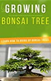 Growing Bonsai Tree: Learn How to Bring Up Bonsai Trees