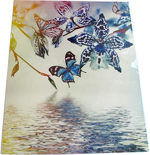 Carlier France Magnet-Deko für Kühlschrank/Geschirrspüler, magnetisch haftende Folie - 45 x 55 cm, Motiv: Schmetterlinge/Blüten