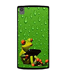 Funny Frog 2D Hard Polycarbonate Designer Back Case Cover for OnePlus X :: One Plus X :: One+X