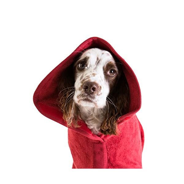 Ruff and Tumble Dog Drying Coat - Classic Collection 9