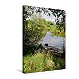 Premium Textil-Leinwand 50 cm x 75 cm hoch, Boat on Havel river bank with willow trees and grass. summer time. | Wandbil