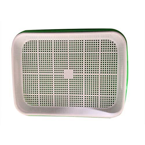 Samenkeimung Tablett, Samenkeimung Tablett BPA Frei Kinder Garten Tablett für Sämling Pflanzen Ideal Garten Home Office - 2 Stücke