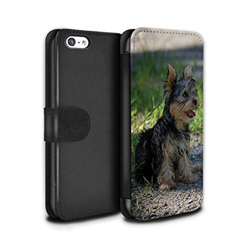 Stuff4® PU-Leder Hülle/Case/Tasche/Cover für Apple iPhone 5C / Yorkshire Terrier/Yorkie Muster Hund/Eckzahn Rassen Kollektion