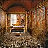 Aliyz 5x5ft Antica civiltà Egitto Sfondo murale All'interno Tombe egizie Fotografia Sfondo Reliquia storica Faraone Sfondo fotografico Studio Puntelli
