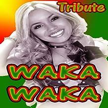 Waka Waka (Shakira Salute)