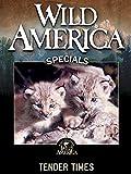 Wild America: Tender Times [OV]