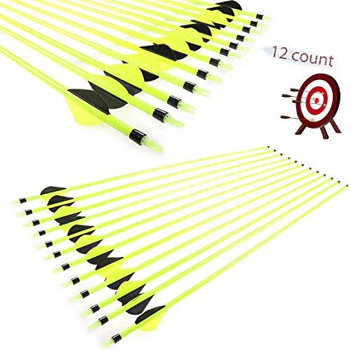 RunFa Pfeile für Bogenschießen Bogenpfeile Carbon 30 Zoll für Bogenschießen mit 2 Zoll Vanes Powerflight Jagdpfeile für Compoundbogen Recurvebogen Langbogen
