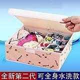 Es ist ein Cover Unterwäsche die nicht zugelassen - Gewebe der Socken Schals organisieren Fall Falten Stoffe die Lagerung bin 13, Wasser waschen, pink Peach unterzubringen).