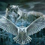 24x 24cm New 5D Full Square Diamant Gemälde Kreuzstich Animal Stickerei Diamant Mosaik Snow Eule und Wolf
