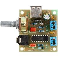 Hilitand Módulo de Placa de Amplificador de Audio USB PM2038 Módulo de Fuente de Alimentación de Audio Receptor de Audio 5W DC 2V-6V
