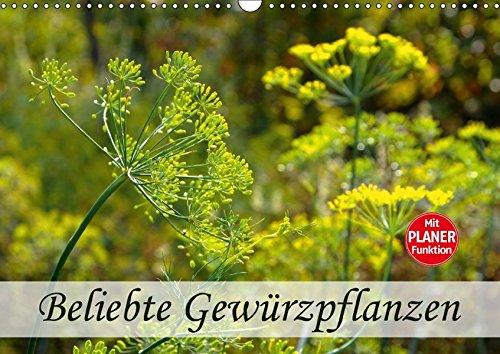 Gewürzpflanzen Heilpflanzengarten (Wandkalender