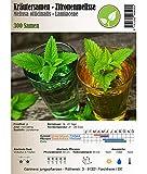 jungepflanzen Semi di Erbe - Melissa/Melissa officinalis - Diversi Tipi(Limoncella)