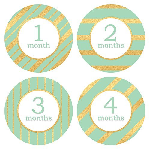 Pinkie Penguin 0651770157083 Baby Monthly Stickers Elegant Style