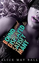BDSM : Bound and Displayed to Satisfy Many: BDSM (Platinum Billionaire BDSM Book 1) (English Edition)