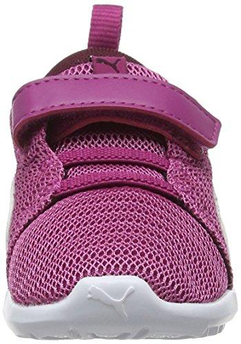 Puma Kids  Carson 2 V Inf Fitness Shoes  Magenta Haze-Fig White  8 5 UK 8 5 UK
