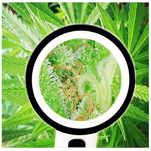LED-Leuchtlupe 420Grow | Hohe Vergrößerung und professionelle Qualität Vergrößerung x30 für...