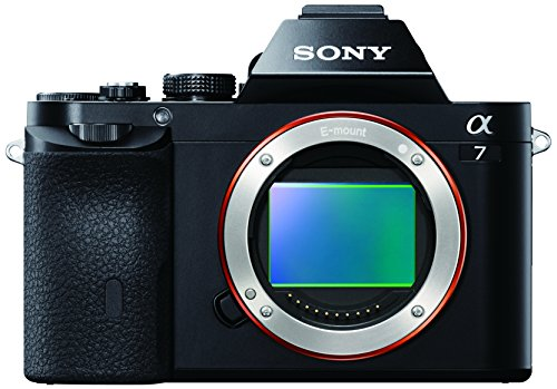 Sony Alpha ILCE-7 - Cámara con visor OLED y 24.3 MP (Full HD, Wi-Fi) color negro