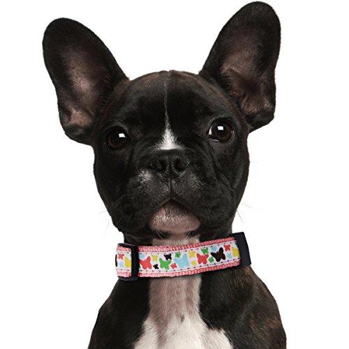 prochive Große Hunde Halsbänder verstellbar, 2,5cm Polka Dot Print inspiriert Ultimate Basic Neopren Hundehalsband rot, passende Hundeleinen erhältlich separat Ultimate Großen Print