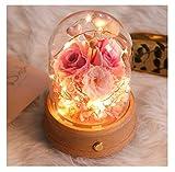 THOR-BEI Ewige Blume Glasabdeckung Spieluhr Licht Bluetooth Lautsprecher Trockene Blume DIY Geburtstagsgeschenk Box Ewige Blume (Farbe : D)