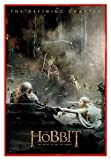 Close Up The Hobbit Poster Die Schlacht der fünf Heere Aftermath (94x63,5 cm) gerahmt in: Rahmen rot