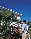Draper 33855 - Tijeras de podar telescópicas para árboles (2,900 mm, capacidad de corte de 32 mm)