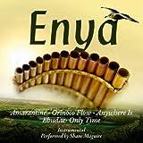 Panpipe Plays Enya