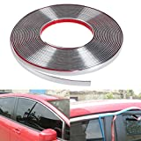 #4: Trustway Car Window Door Edge Guard Beading Moulding Roll Silver Chrome Size 15mm Meter 10 Skoda Laura Type 2